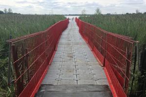 Pontoon walkway